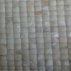 Gloss Ceramic Pearl Highlighter Tile, Thickness: 10 mm, Size: 305 x 305 mm