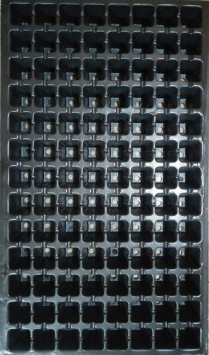 PVC 104 Cavity Seedling Trays, For Agriculture, Size: L 500 Mm X W 285 Mm X H 40 Mm