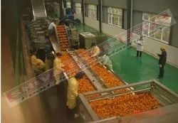 Citrus Juice Processing Plant