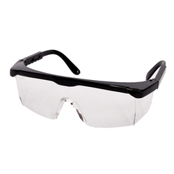 Punk Goggle