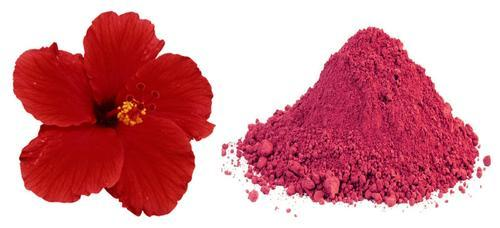 Hibiscus Flower Powder Pack Size Gram 5kg And 100kg Rs 490