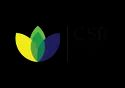 Sustainability Solutions For Csr Projects