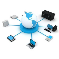 Computer Local Area Networking Services
