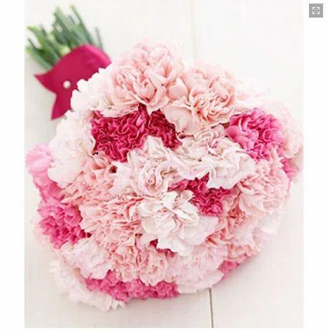 Love Dark Or Light Carnation Flower At Rs 599 Pack Nayabans