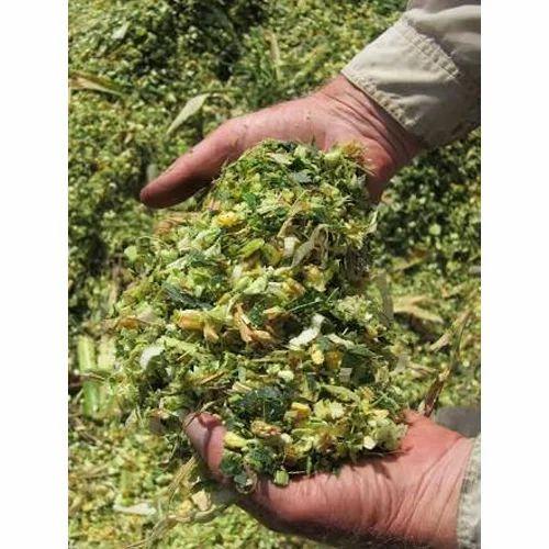 Feed Grade Nutrimeal Corn Silage, Pack Size: 100 To 500 Kgs, Packaging Type: Uv Packaging, Pp Bags, Rs 4.75 /kilogram