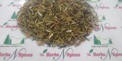 Inderjou Meetha - Inderjav - Kapar - Wrightia Tinctoria - Holarrhena pubescens