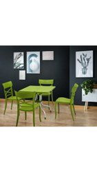 Supreme Cruze Olive Dining Set, For Restaurant & Home, Seating Capacity: 250 Kg