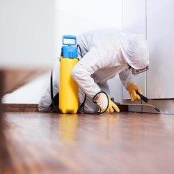 Household Termite Pest Control Service
