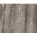 Vishwas Ceramica Ceramic 2044 Ve Glossy Series Floor Tiles, Size: 600 X 1200mm Or 600x600