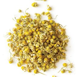 Chamomile Flower Herbs