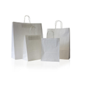 Craft Plain Paper Carry Bags