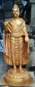 Gautam Buddha Statues( Fiberglass)