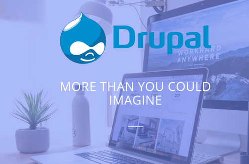Drupal Website Development Services in Greater Noida