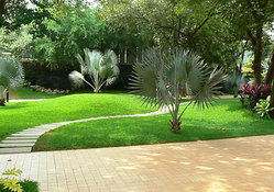 Depends Landscape Garden Contracting Service, Local