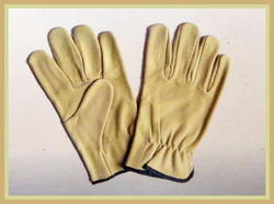 Chrom Leather Hand Gloves