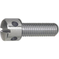 Stainless Steel Capstan Screw