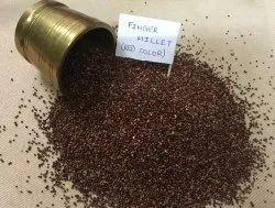 Organic Ragi - Finger Millet