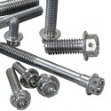 20 Stainless Steel Bolts