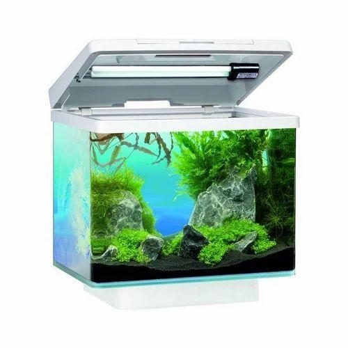 Aquarium Fish Tank Machhlighar मछल क ट क Happy Aqua