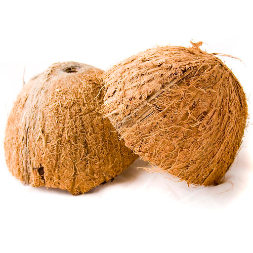 Coconut Importers