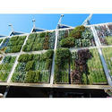 Vertical Garden Development
