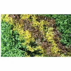 Mat V-4 Artificial  Wall Grass