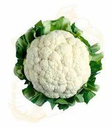 White Cauliflower, Packaging: Carton