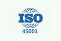 Iso 45001 Consultancy Services, New Certification