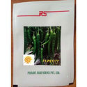 Peasant Chilli Seed, Pack Size: 100 Seeds/pouch