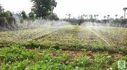 Laser Spray Irrigation System
