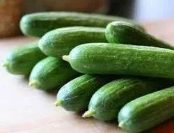 Cucumber (Khira Kakdi)