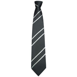 Institutional Neck Ties