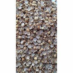 Coriander Split Seeds