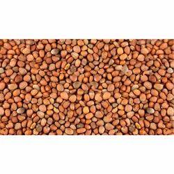 Muli Seed, Pack Size: 1-10 Kg