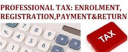 Professional Tax Return Annually