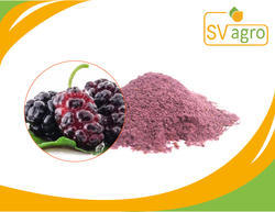 Mulberry Fruit P.E Extract