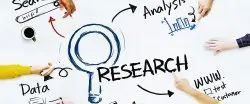 Market Research, Insights And Analysis