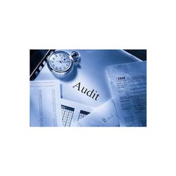 Individual Consultant Statutory Audit Service, India