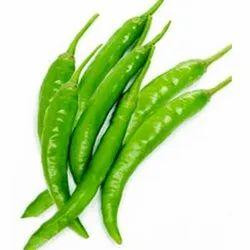 A Grade,B Grade Fresh Green Chili, For Food, Gujarat