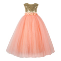 Embellishment Gowns For Toddlers, Age: 2-3 To 11-12 Years