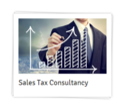 Sales Tax Consultants