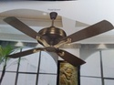 Roast Brown, Vanilla Electricity Titanis Ceiling Fans, Size: 1200 Mm