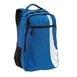 Blue and White Travelling Bag