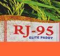 Rj-95 Elite Paddy Seed