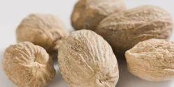Nutmeg Testing Analysis Laboratory Service