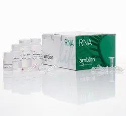 Invitrogen PureLink RNA Extraction Mini Kit