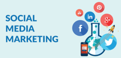 Social Media Marketing Agencies, Business Industry Type: It