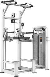 Weight Machines Cosco Dip/ Chin Assist CE-5009