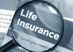 LIFE INSURANCE SERVICES -INSURANCE CONSULTANT