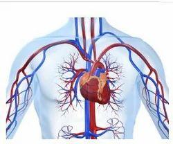 Vedic Cardiology